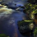 Prairie River Morning by Dale Kauzlaric