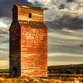 Prairie Sentinel by Wayne Sherriff