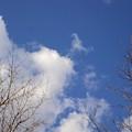 Prairie Skies 3 by Janice Robertson