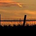 Prairie Sunset by Inge Riis McDonald