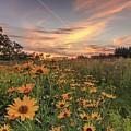 Prairie Sunset by Paul Schultz