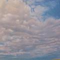 Prairie Trail by Cris Fulton