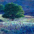 Prairie Trees Impressionistic Grunge by Anna Louise