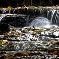 Prather-creek-rapids by Fred Lassmann
