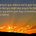 Pray Abundantly by John Malone