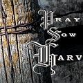 Pray Sow Harvest by Troy Stapek