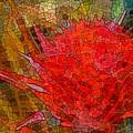 Bloom In Bits by Ellen Cannon