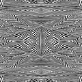 Preprogrammed by Douglas Christian Larsen