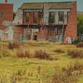 Preservation by E Colin Williams ARCA