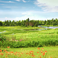 Pretty Countryside by John M Bailey