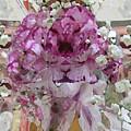 Pretty In Purple by Tim Allen