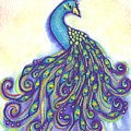 Pretty Peacock by Merrie Kapron Taverna