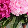 Pretty Pink Peonies In Ball Jar Vase by Carol Groenen