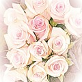 Pretty Roses by Rachel Hannah