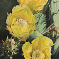 Prickle Pear Cactus Flower Trio by Rebecca Zook