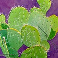 Prickly Pear Cacti  by Mary Beth Dolan