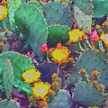 Prickly Pear Cactus 2 by Methune Hively