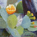 Prickly Pear In Bloom by Susan Woodward