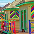 Primary Colors by Debbi Granruth