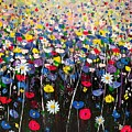 Primavera by Angie Wright