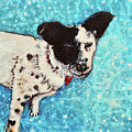 Primrose Water Love by Ashleigh Dyan Bayer