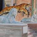 Princeton Tiger by Haldy Gifford