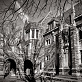 Princeton University Foulke And Henry Halls Archway by Olivier Le Queinec