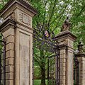 Princeton University Main Entrance Gate by Susan Candelario