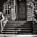 Princeton University Nassau Hall Tigers by Olivier Le Queinec