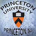 Princeton University Princeton Nj. by Movie Poster Prints