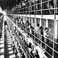 Prison: San Quentin, 1954 by Granger