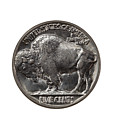 Pristine Buffalo Nickel On White Background  by Thomas Baker