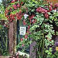 Private English Garden by David Lloyd Glover