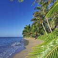 Private Molokai Beach by Dave Fleetham - Printscapes