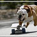 Pro Skateboarder by Marvin Blaine