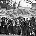 Prohibition Protestors by Daniel Hagerman