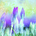 Promises Kept - Spring Art by Jordan Blackstone