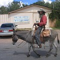 Prospector Re-enactor With Burro Passing Rose Bush Museum Sign Tombstone  Arizona 2004 by David Lee Guss