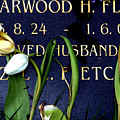 Protective Tulips by Jez C Self