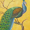 Proud As A Peacock by Ben Kiger