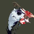 Proud Bird by David Lee Thompson