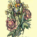 Proud Iris by Tais Karelina