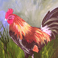 Proud Rooster by Barbara Harper