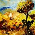 Provence 56 by Pol Ledent