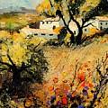 Provence 56123 by Pol Ledent