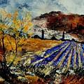Provence 564578 by Pol Ledent