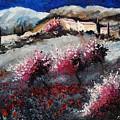 Provence 675458 by Pol Ledent