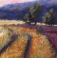 Provence by Pat Snook