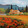 Provence Villa by Dawn Thrasher