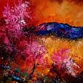 Provence560908 by Pol Ledent
